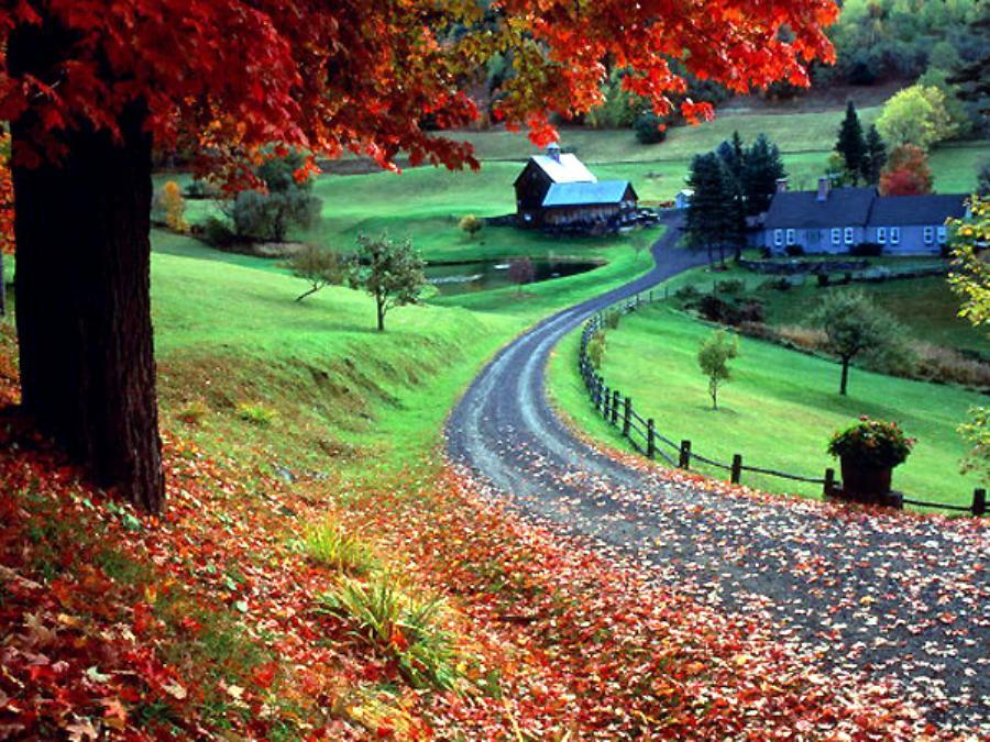 عکس طبیعت زیبا و رویایی
